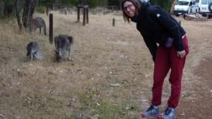 La bitchou et les kangourous