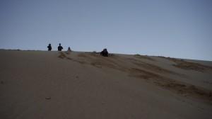 Sandbording à Fraser Island