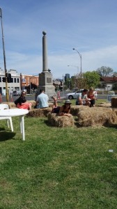 Spring flin festival